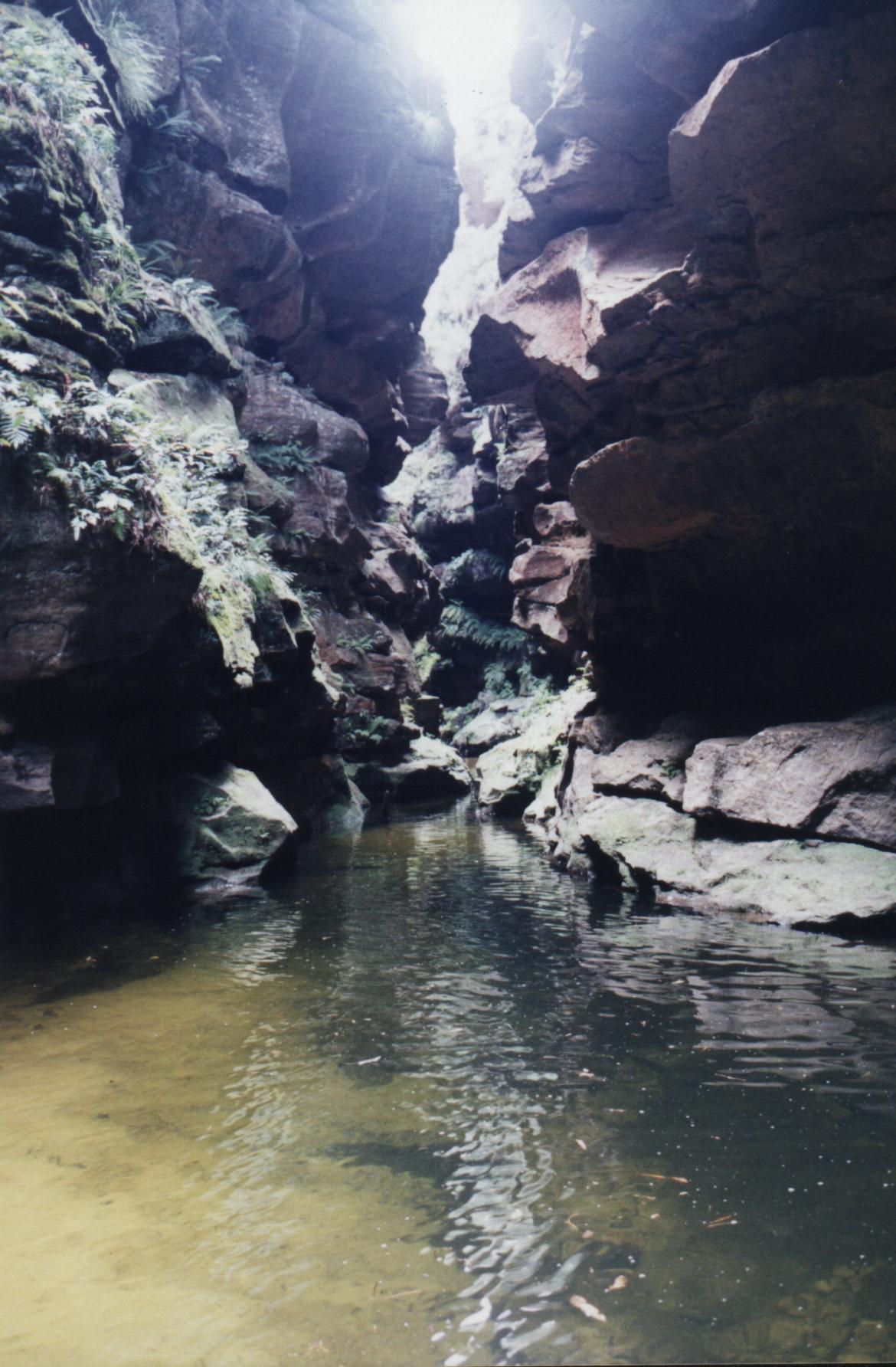 The Bungleboori